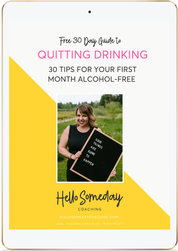 Free 30 Day Guide To Quitting Drinking For Busy Women. 30 Tips For Your First Month Alcohol-Free.